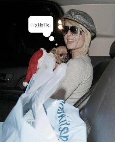 ho ho ho paris amp pup do holiday shopping