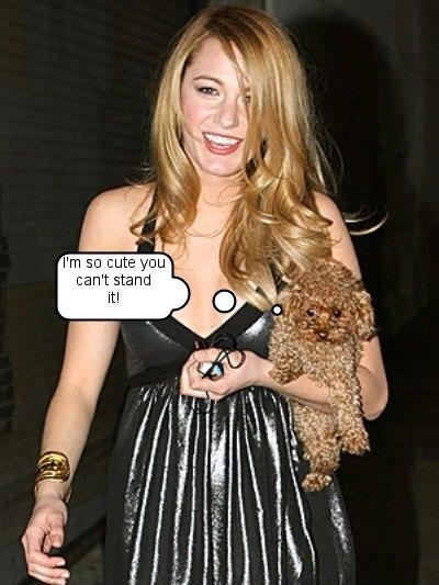 blake lively penny dog