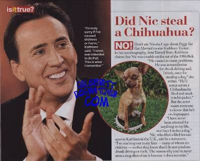 By telling in touch magazine he has never stolen a dog in his life