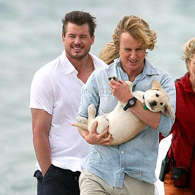 marley and me puppy. Owen Wilson#39;s Puppy Love