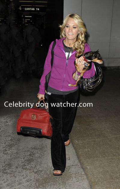 Carrie Underwood is all smiles as she carries her bag and dog, Ace,
