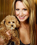 ashley tisdale dog
