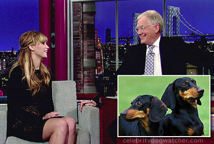 jennifer lawrence dachshunds