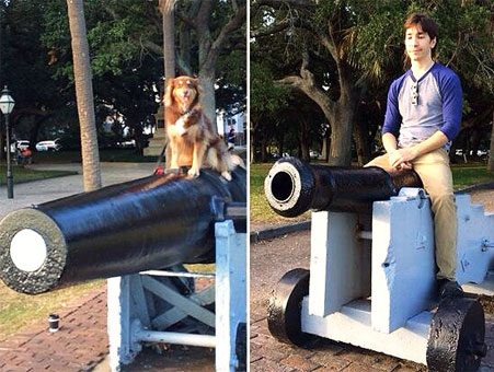 justin long amanda seyfried dog cannon